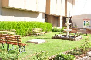 حديقة الباحة الخلفية للكلية